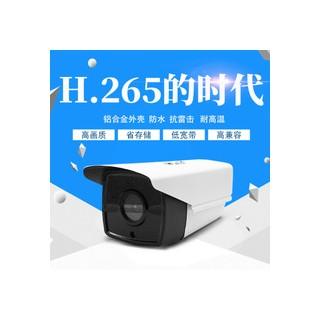CCTV 4MM 200W PIXEL IP-CAM H.265